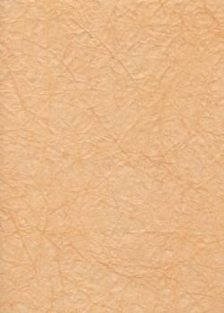 """Papier """"translucide toilé"""" ocre (48x70)"""
