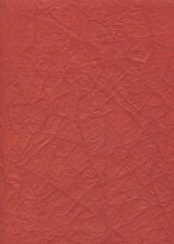 """Papier """"translucide toilé"""" rouge (48x70)"""
