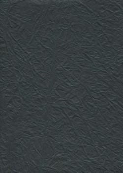 """Papier """"translucide toilé"""" noir (48x70)"""