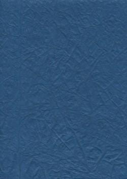 """Papier """"translucide toilé"""" bleu  (48x70)"""