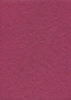 """Papier """"translucide toilé"""" pourpre  (48x70)"""
