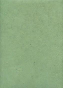 Lokta tilleul (50x75)