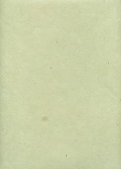 Lokta vert d'eau (50x75)