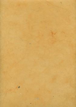 Lokta safran (50x75)