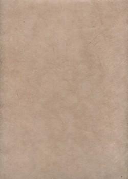 Lokta beige rosé (50x75)