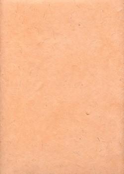 Lokta saumon (50x75)
