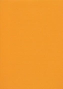 Skip grain fin orange (65x100)