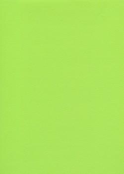 Skip grain fin vert anis (65x100)