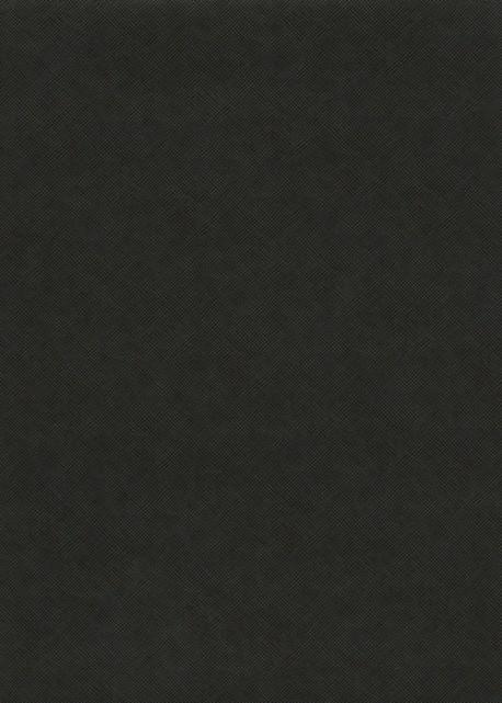"""Papier grain toilé noir """"Cartier©"""" (65x100)"""