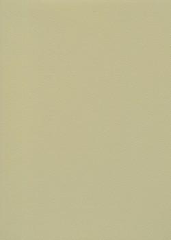 Skip grain fin mastic (65x100)