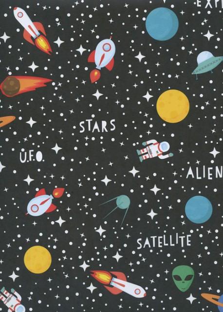 Le cosmos (68x98)