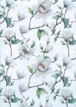 Magnolia blanc (68x98)