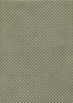 Lokta plumetis argent fond gris vert (50x75)