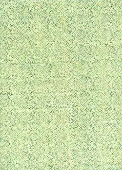 Lokta petits points 2 tons vert (50x75)