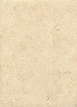 Véritable Gampi sable (42x60)