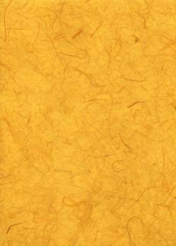Véritable Gampi jaune tournesol (42x60)