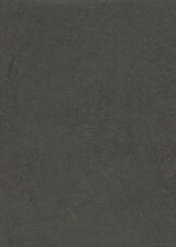 Véritable Gampi noir (42x60)