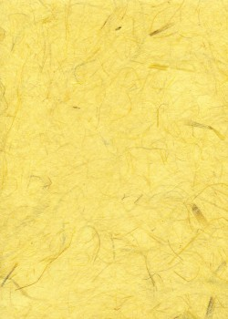 Véritable Gampi jaune citron (42x60)