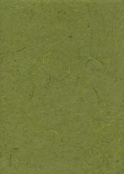 Véritable Gampi vert olive (42x60)