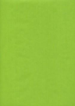 """Kraft uni"" vert anis (70x100)"