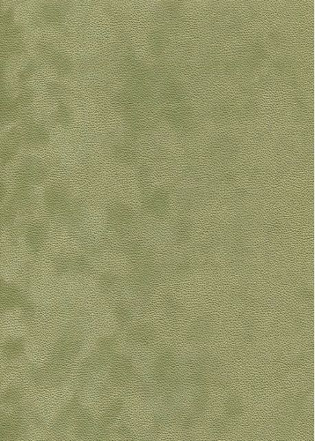 Simili cuir velours Zeste tilleul (70x100)