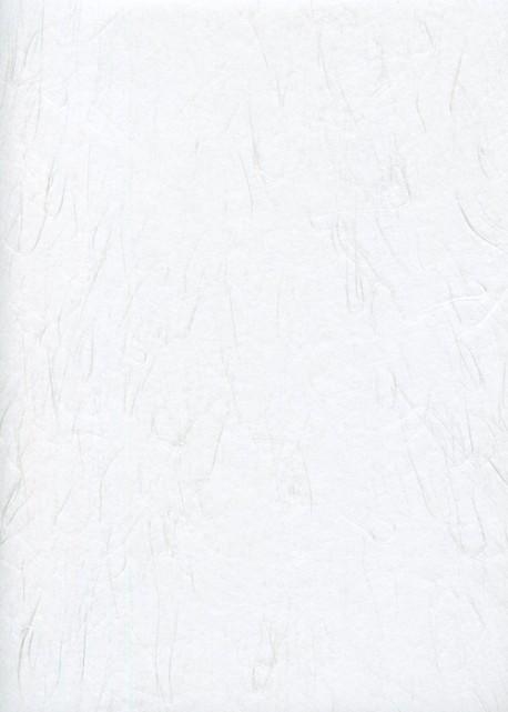 Papier japonais-Fibre blanche fond blanc (63x97)