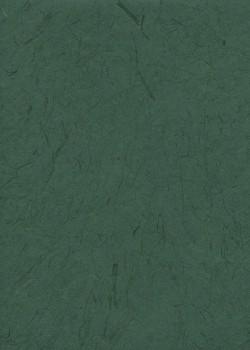 Véritable Gampi vert sapin (42x60)