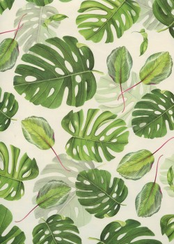 Feuilles de monstera (70x100)