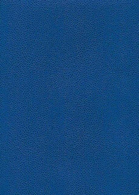 """Skivertex """"Gros Galuchat"""" bleu électrique"""