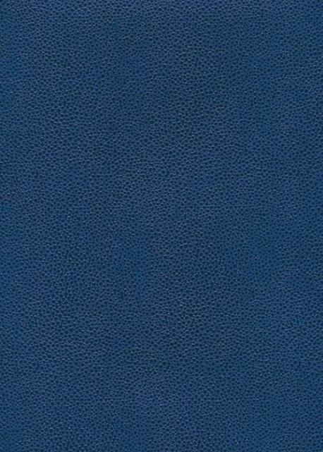 """Skivertex """"Gros Galuchat"""" bleu moyen"""