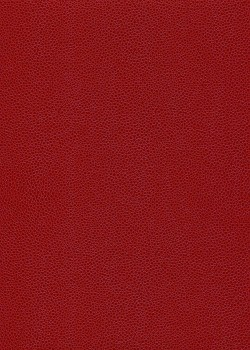 "Skivertex ""Gros Galuchat"" rouge"