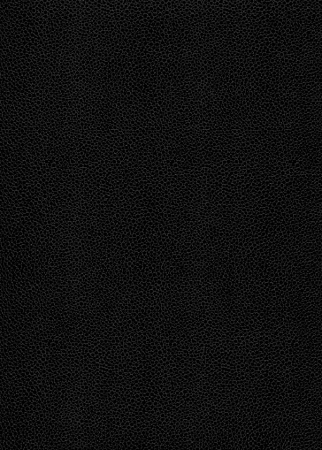"""Skivertex """"Gros Galuchat"""" noir"""