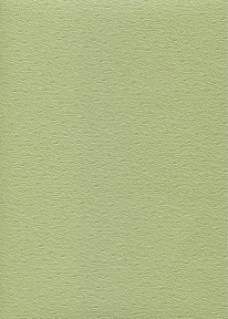 "Simili cuir Skivertex ""Autruche"" vert amande"