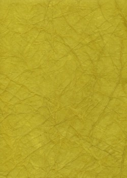 """Papier """"translucide toilé"""" citron vert (48x70)"""