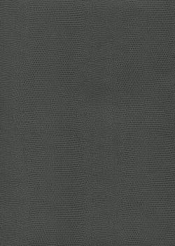 "Skivertex ""Lézard"" gris foncé"