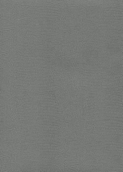 """Skivertex """"Lézard"""" gris souris"""