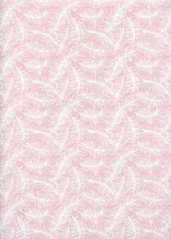 Plumage blanc fond rose (50x70)