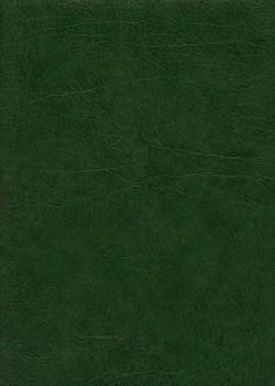 "Papier imitation cuir ""chevreau"" vert (70x100)"