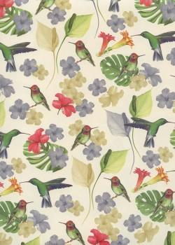 Les colibris (70x100)