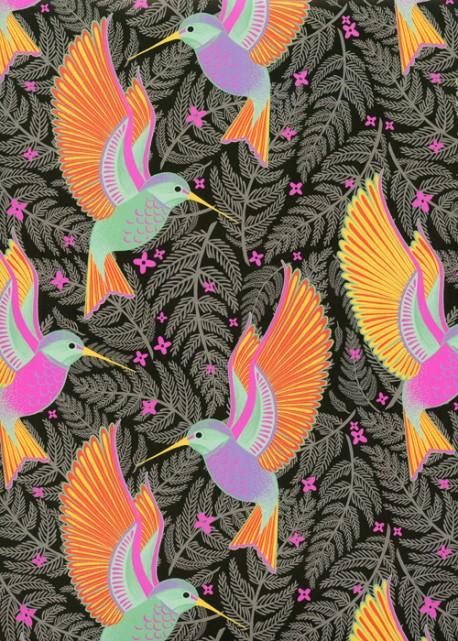 Les colibris colorés fond noir (50x70)