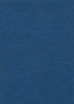 "Papier imitation cuir ""chevreau"" bleu (50X65)"