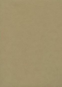 "Papier imitation cuir ""galuchat"" mat beige clair (50x65)"