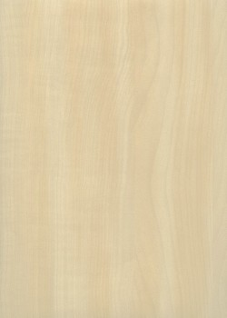 "Simili cuir ""effet bois"" érable blanc (70x106)"