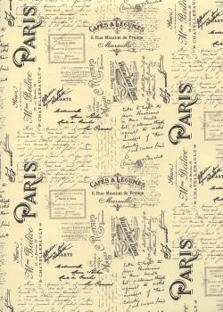 Les écritures de Paris (49,5x68)