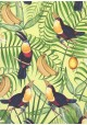 Les toucans fond exotique vert et jaune (70x100)