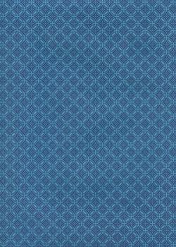 Mizuki 2 tons de bleu (50x70)
