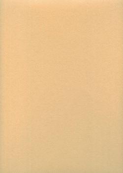 """Papier uni """"Japicol"""" beige (50x70)"""