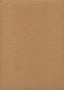 """Papier uni """"tiziano"""" gris (50x70)"""