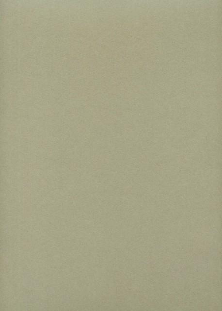 "Papier uni ""japicol"" vanille (50x70)"