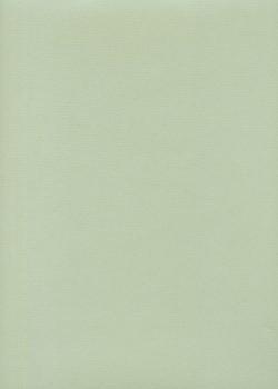 """Papier uni """"Ingres Hahnemühle"""" vert d'eau (48x62,5)"""